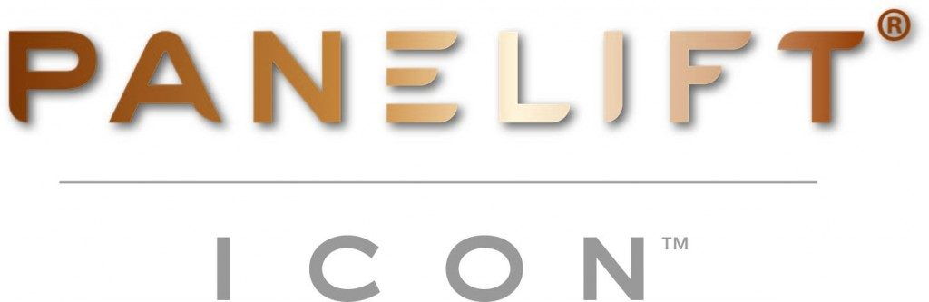 Panelift Icon Logo